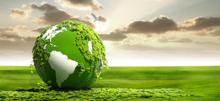 «La Fondation Mohammed VI a développé un logiciel de calcul d'émissions de CO2»