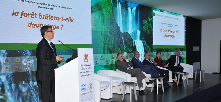Changement climatique: les collectivités territoriales marocaines impliquées dans le processus de lutte