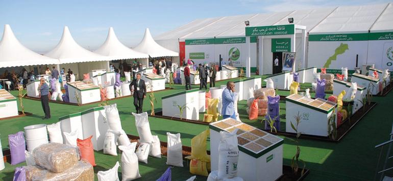Plan Maroc Vert : Les réalisations des principales filières