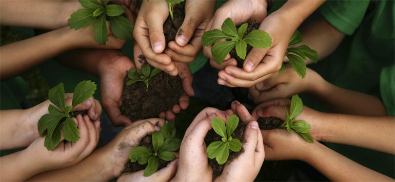 Risques environnementaux : les assureurs réfléchissent à des offres plus adaptées