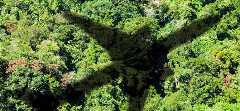 Special aéroports : L'ONDA résolument engagé dans la protection de l'environnement