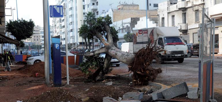 Réaménagement de la voirie de Casablanca :  les délais seront respectés