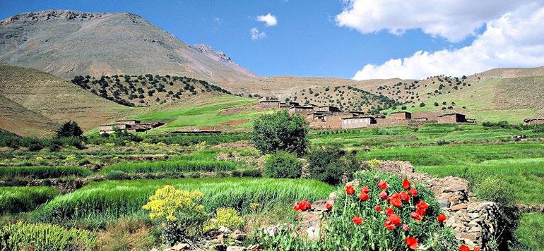 HCP – Tadla-Azilal: Depuis les années 2000, 75% des émigrants étaient des agriculteurs