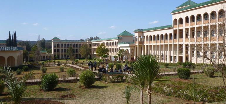 Innovation: l'Université Hassan 1er de Settat distinguée à Toronto