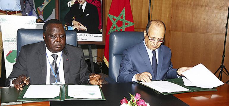 Athlétisme : le Maroc au chevet de l'Afrique