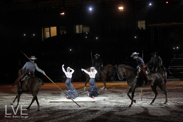 Diapo spectacle haut en couleurs pour la 10e dition du for Salon du cheval angers 2017