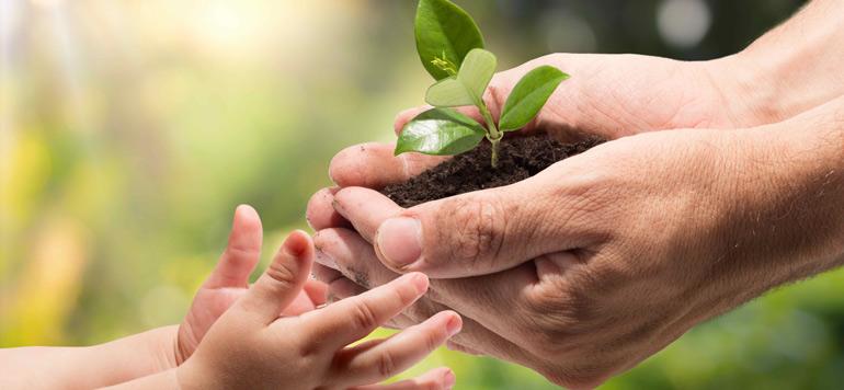 Financement de l'agriculture : Croissance et développement durable vont de pair pour le GCAM
