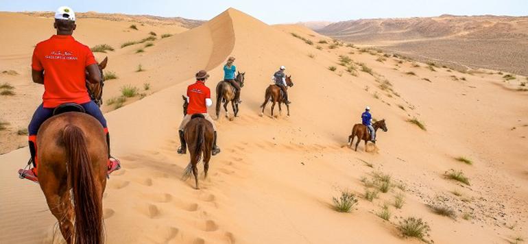 Une course de chevaux dans le désert