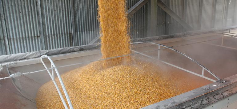 Agriculture : l'américain Deerfield Ag s'installe au Maroc