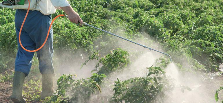 Pesticides à usage agricole : une réglementation plus contraignante est en préparation