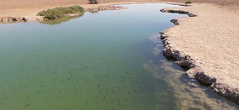 Le Maroc tient à la préservation de ses zones humides