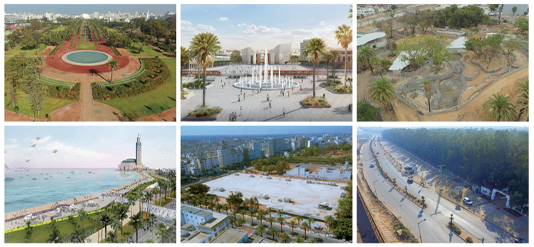 Casablanca : 500 000 arbres seront plantés d'ici 2020