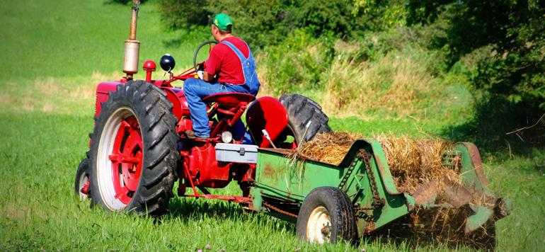 L'Australie envisage des visas pour les fermiers sud-sfricains blancs