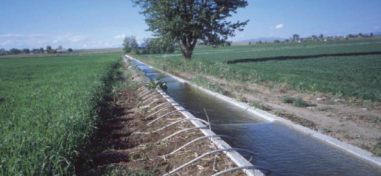 Casablanca-Settat : soutien conséquent de l'Etat à l'agriculture