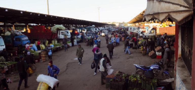 Dans les dédales du Marché de gros de Casablanca
