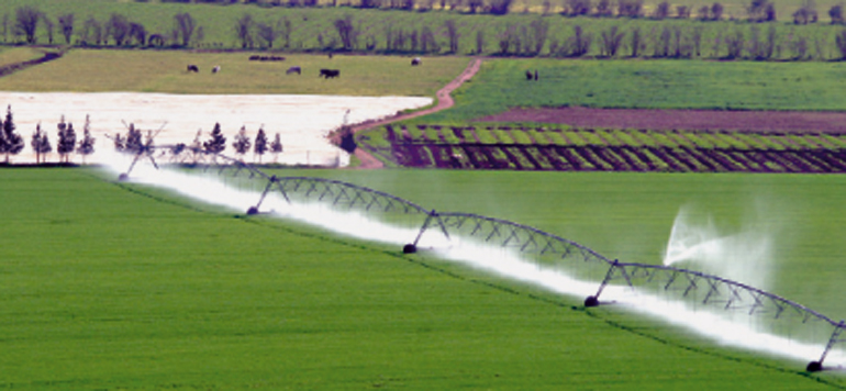 Plan Maroc Vert : La tendance haussière de la production se maintient