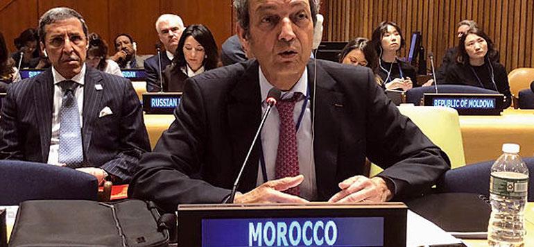 Gestion des écosystèmes forestiers : le Maroc présente sa stratégie aux Nations Unies