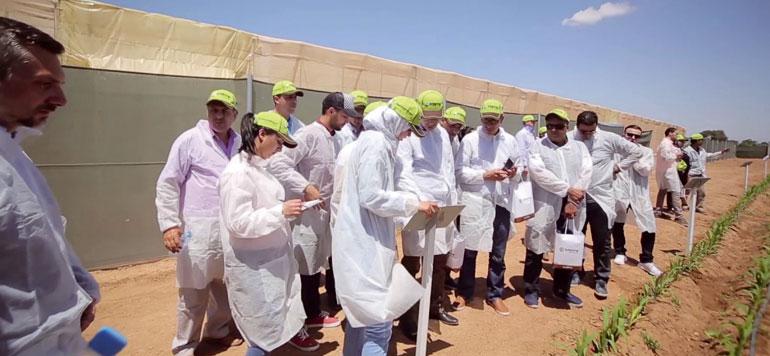 Produits phytosanitaires : les bonnes affaires de Syngenta au Maroc