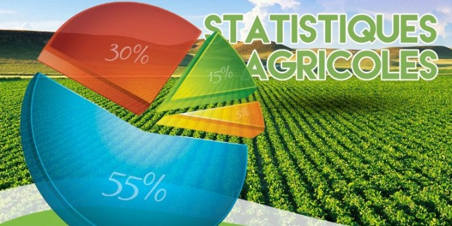 Statistiques agricoles : le Maroc forme  des experts africains