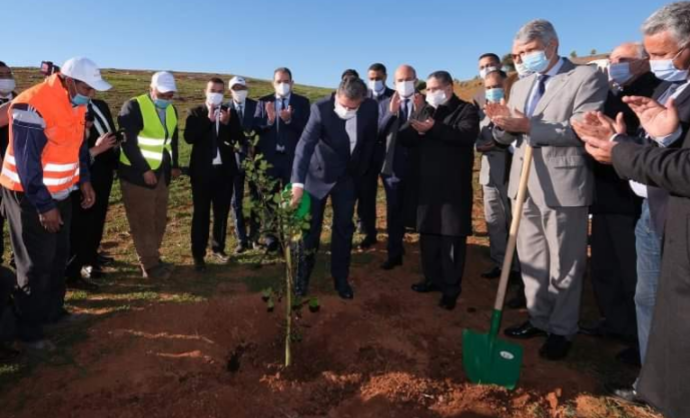 Lancement de plusieurs projets de développement agricole et forestier à Khénifra